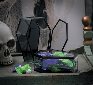 HINGED GLASS COFFIN TREASURE BOX SET